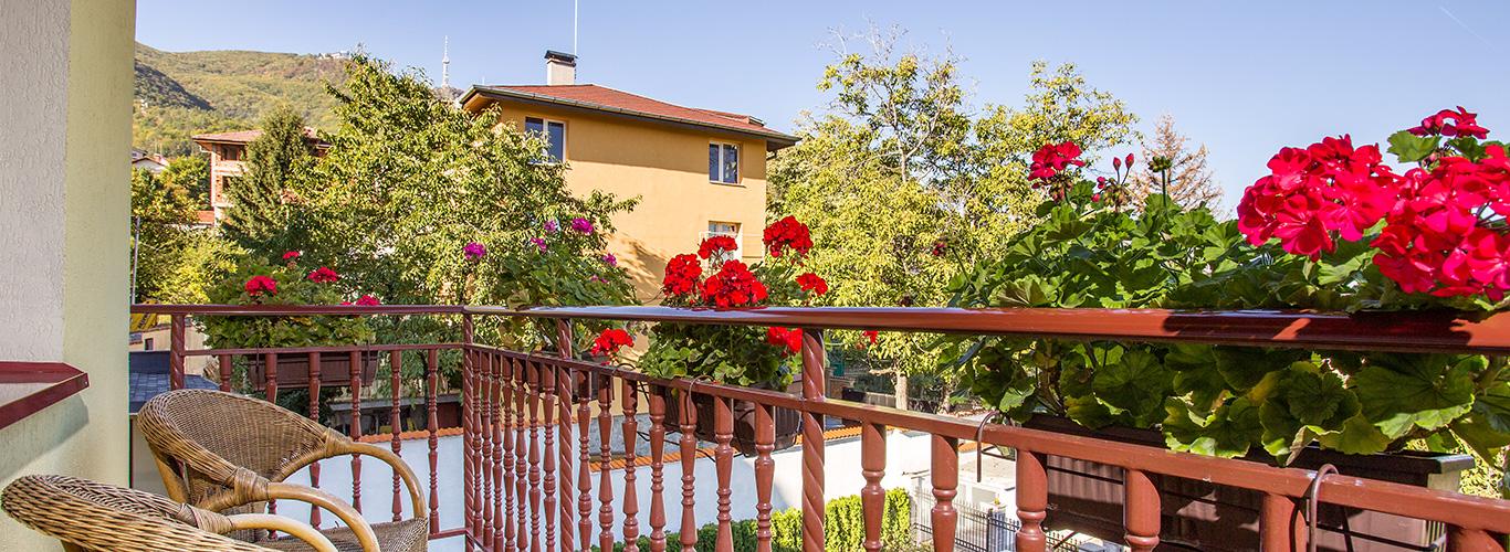 Villa_Boyana_Head_location_1.jpg