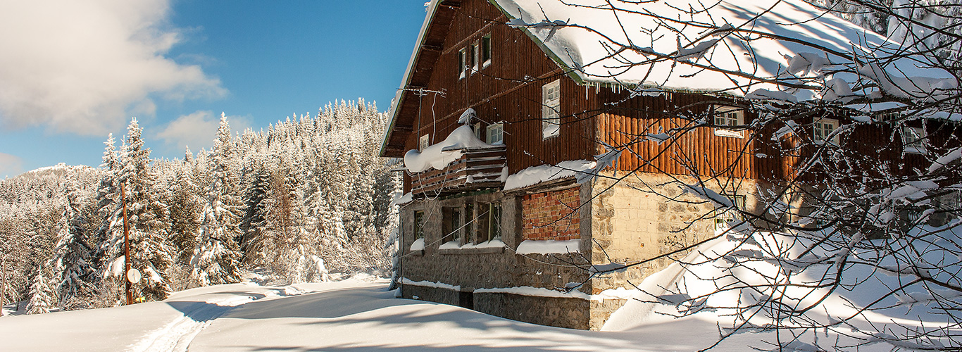 Villa_Boyana_Head_winter_1.jpg